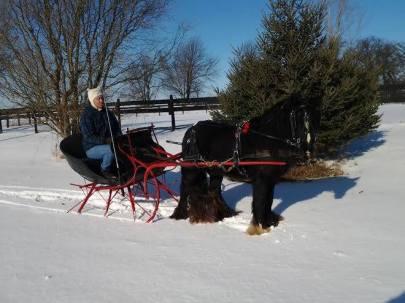 Wyatt sleigh ride 2014